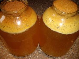 Как сделать яблочный сидр из сока в домашних условиях