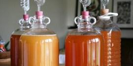 Сидр в домашних условиях – секреты ароматного напитка из райских яблок