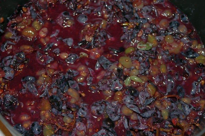 как делать чачу из виноградного жмыха - Советы на w4q.ru