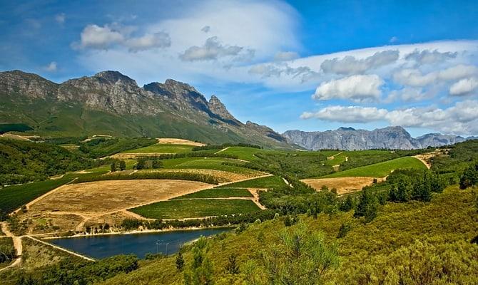 Фото винодельческого региона ЮАР