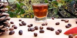 Настойка на кедровых орешках – лечебная сила из Сибири