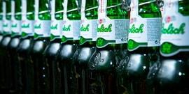 Пиво Гролш – голландский бренд с длинной историей и завидным будущим