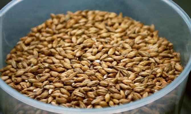 Подготовка зерна