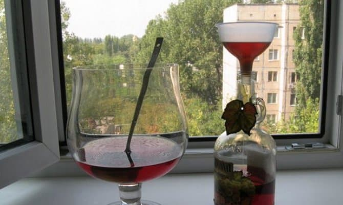 Волшебный корень калгана – готовим настойку на водке