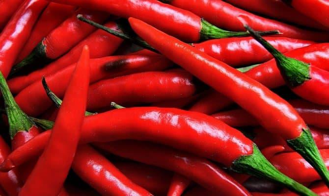 Стручки красного перца
