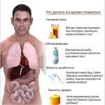 alkohol_infografica
