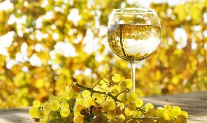 Бокал белого сухого винаБокал белого сухого вина