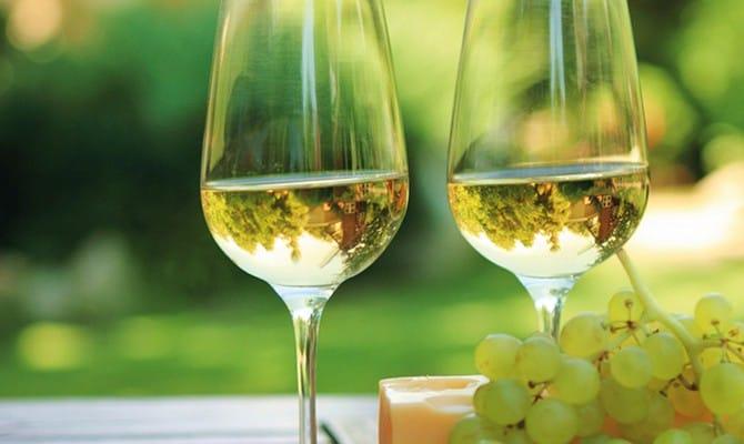 Белое вино с сыром и виноградом