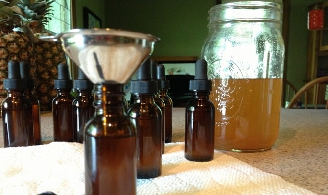 Применение настойки из пчелиного подмора – эффективная апитерапия в вашем доме
