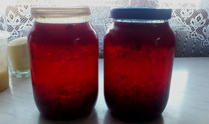 Самогон на ягодах клюквы – как приготовить «по-быстрому»?