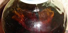 Самогон на дубовой коре – напиток подобный изысканному коньяку