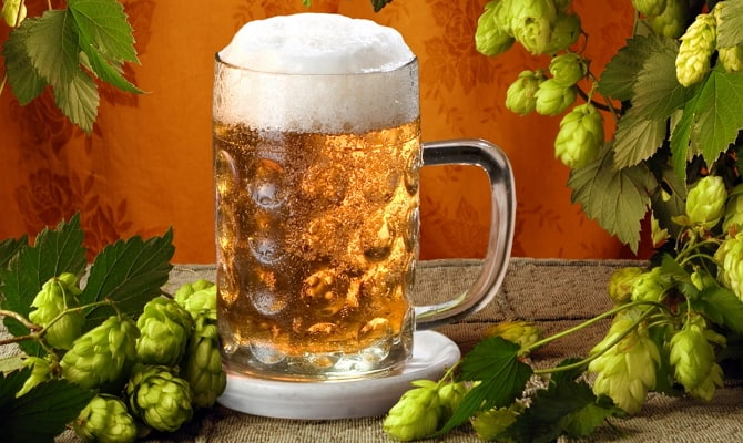 Почему применяются теплое пиво и мед?