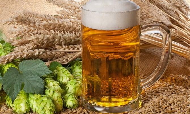 Голландское пиво Хайнекен