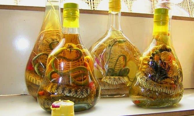 Как изготавливается водка со змеей и каковы ее целебные свойства