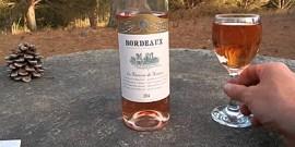 Изысканное вино «Бордо» из Франции