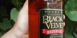 Превосходный виски Black Velvet