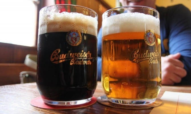Чем полезно и вредно светлое пиво?