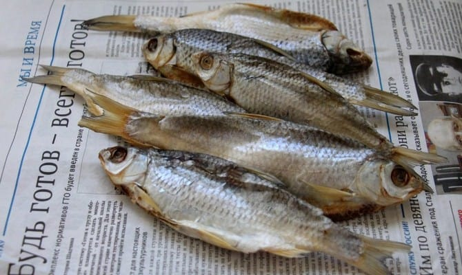 Чем вяленая рыба отличается от сухой?
