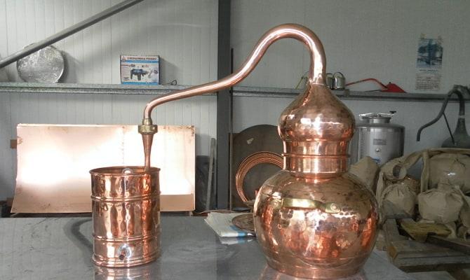 Аппарат португальского типа