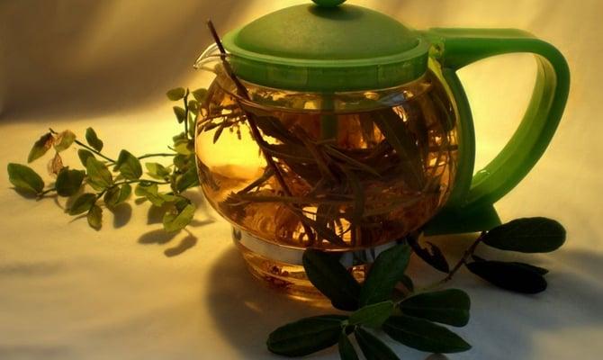 Рецепты от алкоголизма с любистком – эффективное лечение алкоголизма любой стадии