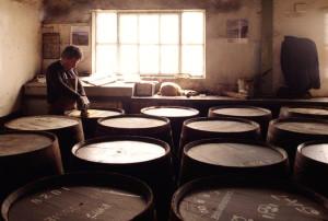 Фото производства канадского виски, whiskypro.ru