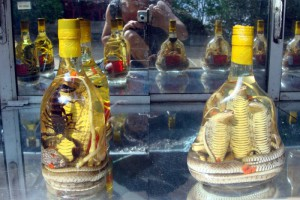 На фото - вьетнамский ром со змеей, gazeta.ru