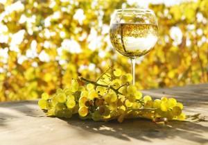 На фото - белое вино для приготовления кролика, winestyle.ru