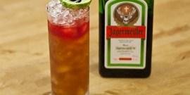 Коктейли с Егермейстером – темпераментные напитки с немецким характером