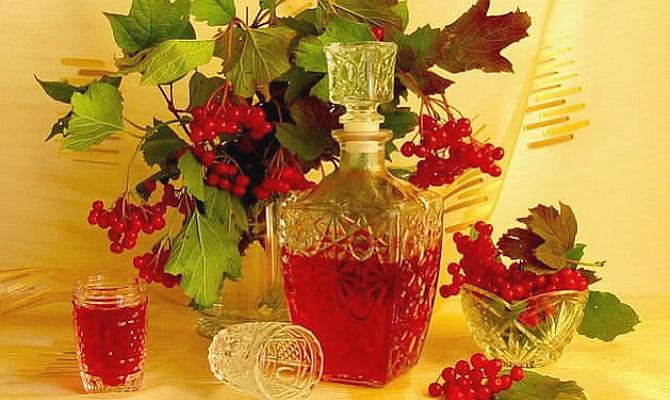 Фото спиртного напитка из калины