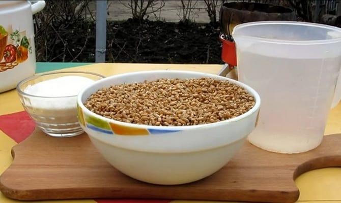 Зерновой самогон в больших пропорциях