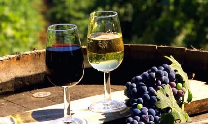 История российского виноделия