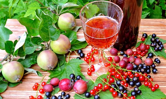 Сырье для производства вина