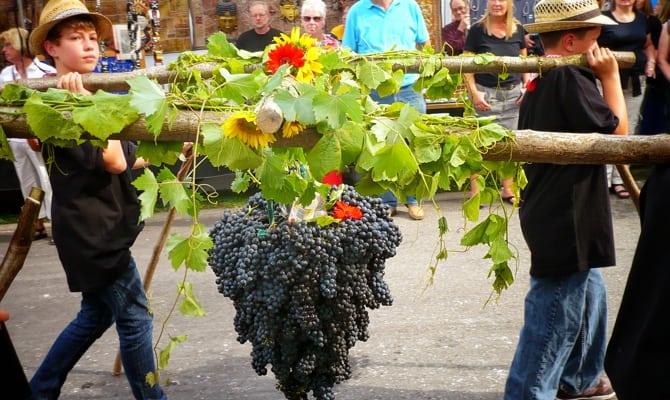 Бургундские вина
