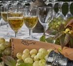 Белое сухое вино «Гурджаани» для истинных ценителей вкуса