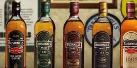 Ирландский бренд виски bushmills black bush