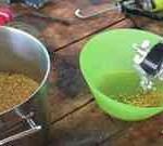 Изготовление самогона из кукурузы