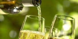 Напиток богов — белое сухое вино Италии