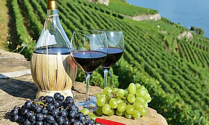 Регионы производства белых вин