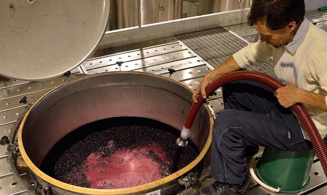 Основные характеристики качественного красного полусладкого вина